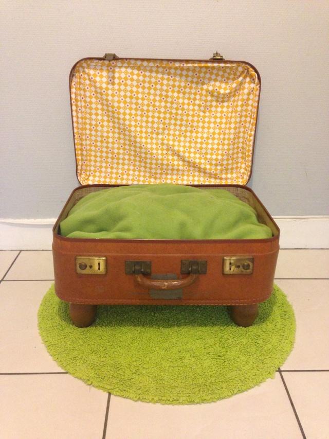 DIY - Panière valise pour chat et petits chiens Img_0626