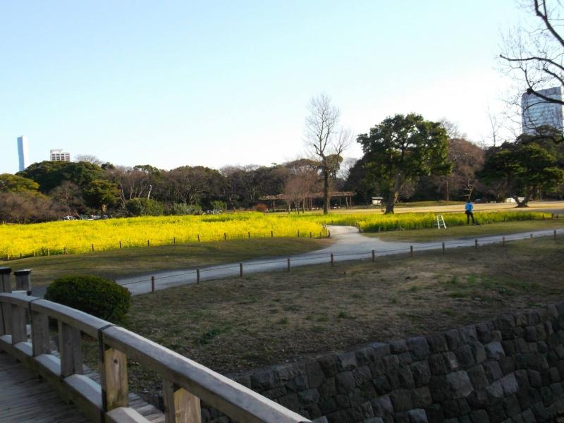 [Carnet de Voyage] Un petit voyage au Japon ?  Jardin11