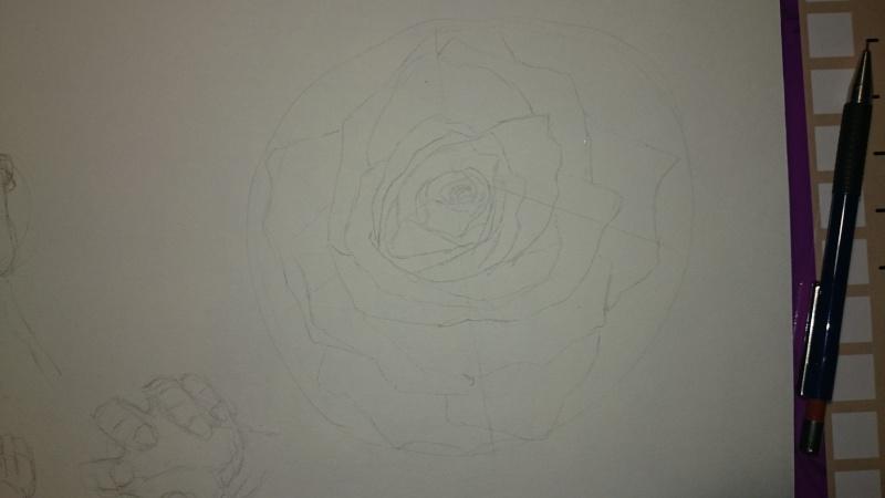 La vie d'une rose... Dsc_0217
