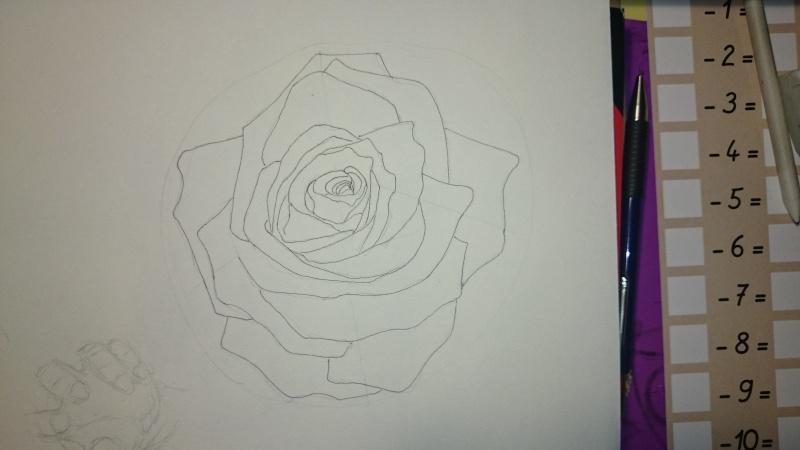La vie d'une rose... Dsc_0218