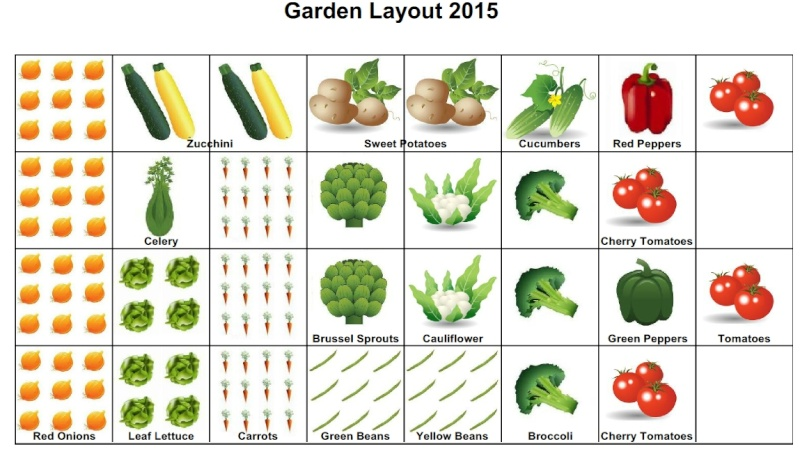 Here's my 4X8 Garden Plan 2015_g11