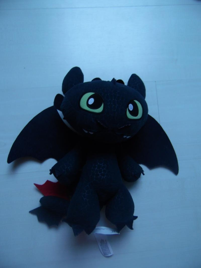 La collection de Dragons Forever Sam_0112