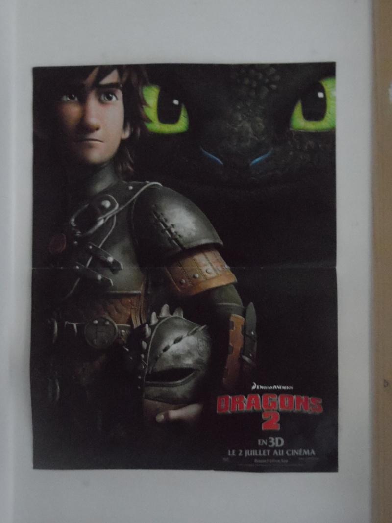 La collection de Dragons Forever Sam_0113