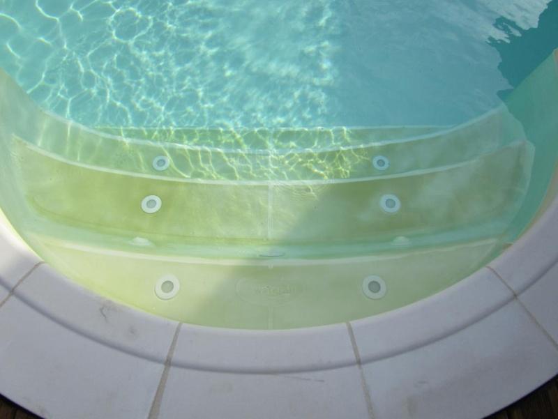 Coloration gris/vert sur le plat des marches d'escalier Img_4117