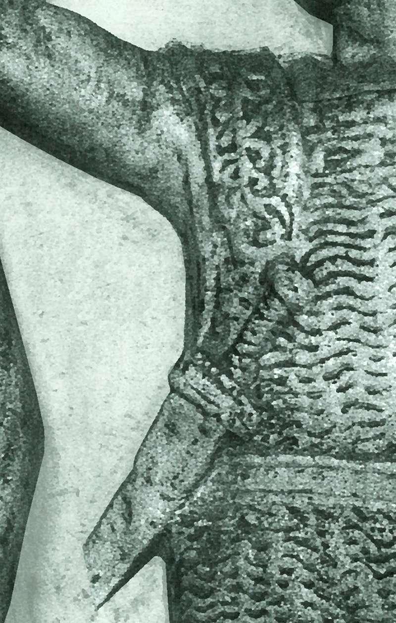 les decorations sur les renforts d'épaules Relief11