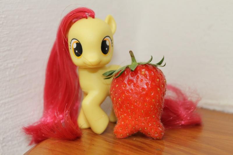 Ma pony collection <3 - Sifflebiz Img_1110