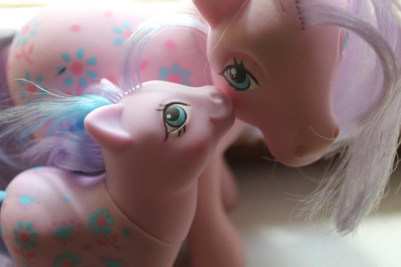 Ma pony collection <3 - Sifflebiz Img_1710