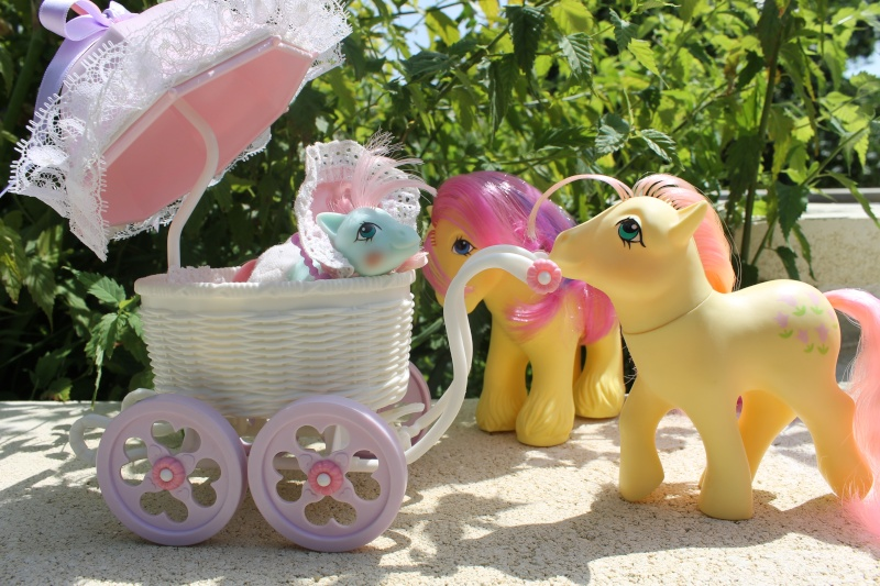 Ma pony collection <3 - Sifflebiz Img_1716