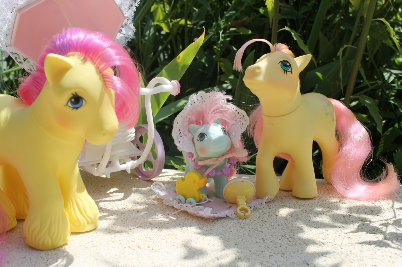 Ma pony collection <3 - Sifflebiz Img_1717