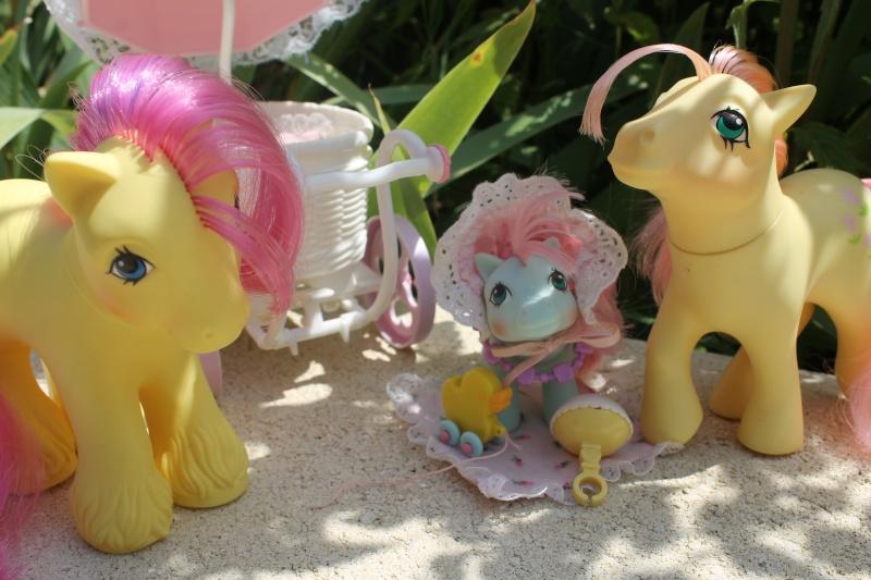 Ma pony collection <3 - Sifflebiz Img_1718
