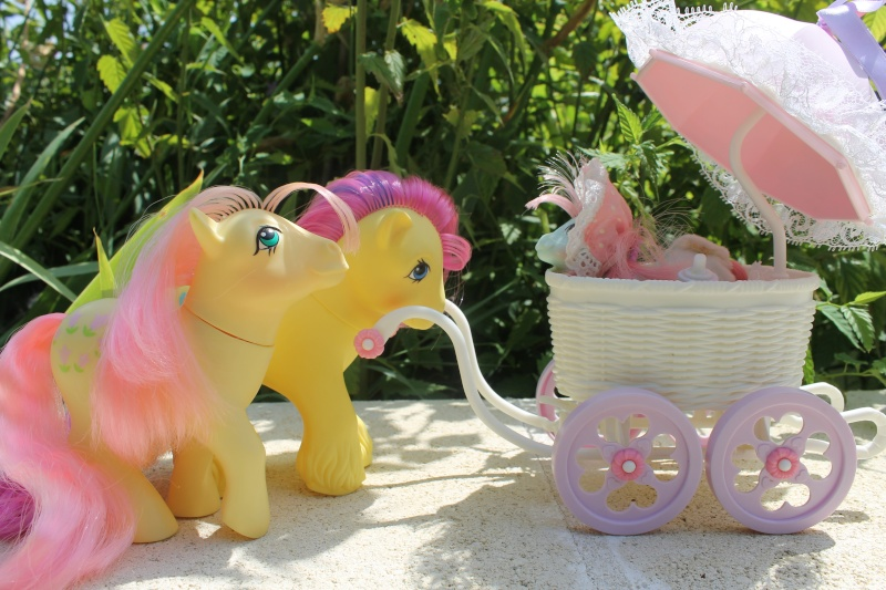Ma pony collection <3 - Sifflebiz Img_1723
