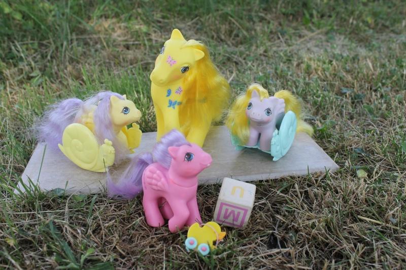 Ma pony collection <3 - Sifflebiz Img_1730