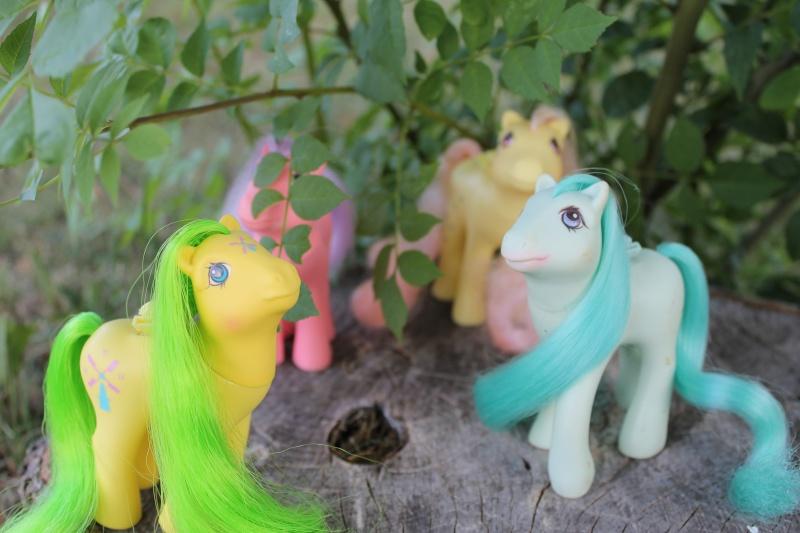 Ma pony collection <3 - Sifflebiz - Page 2 Img_1813