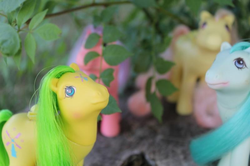 Ma pony collection <3 - Sifflebiz - Page 2 Img_1814