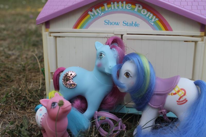 Ma pony collection <3 - Sifflebiz - Page 2 Img_1826