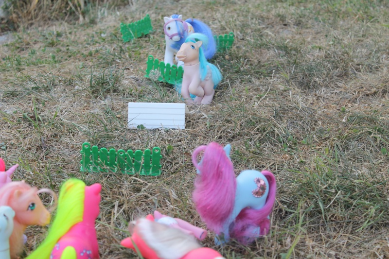 Ma pony collection <3 - Sifflebiz - Page 2 Img_1830
