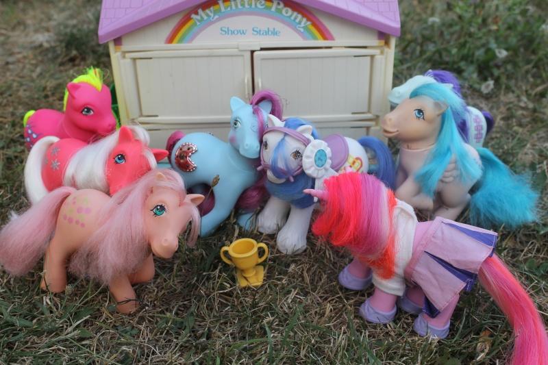 Ma pony collection <3 - Sifflebiz - Page 2 Img_1833