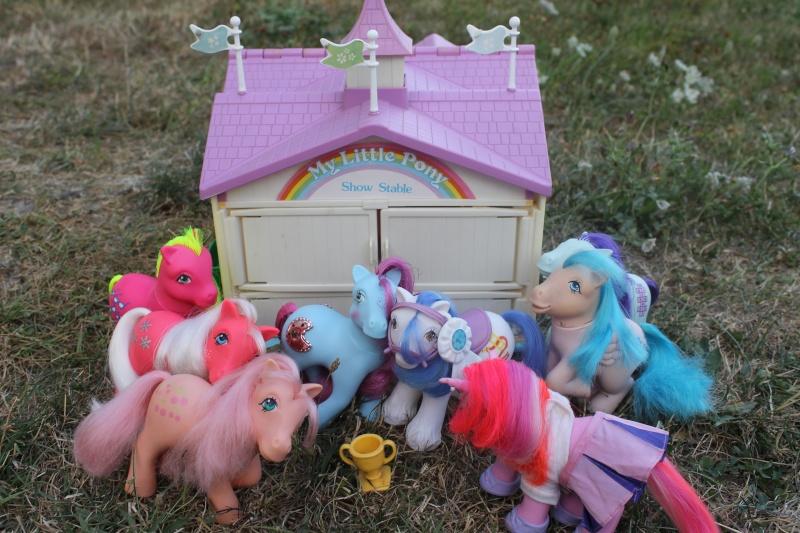 Ma pony collection <3 - Sifflebiz - Page 2 Img_1834
