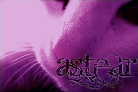 Astear, présentateur des jeux *PNJ* Asteab10