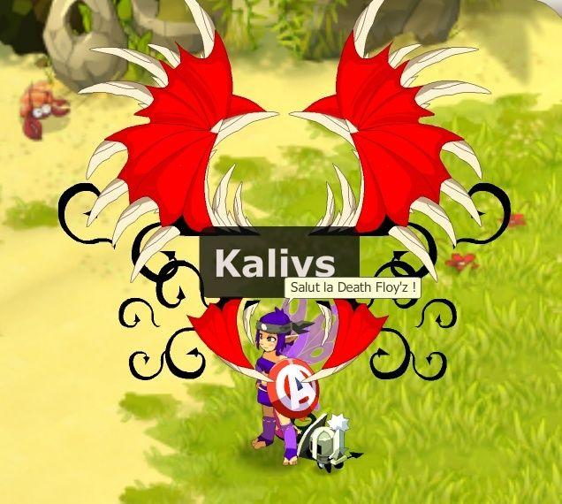 [Phase 2] Candidature de Kaliys Salut_10