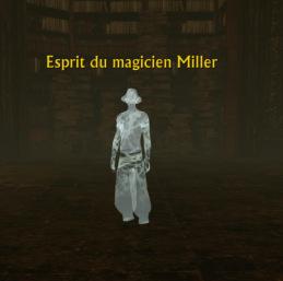 [DJ] Comment accéder au Jardin Libris de la bibliothèque Esprit13
