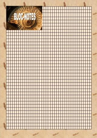 Question traditionnelle : le fameux carnet de bord - Page 8 Carnet12