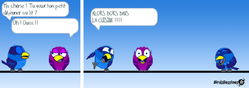 Les Birds - Page 12 14396410