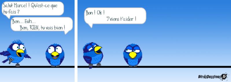 Les Birds - Page 13 14403413
