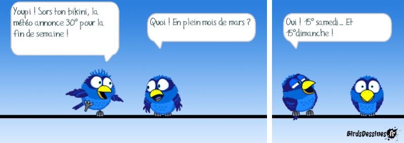 Les Birds - Page 13 14403415