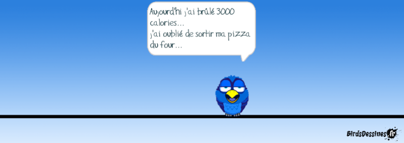 Les Birds - Page 13 14403511