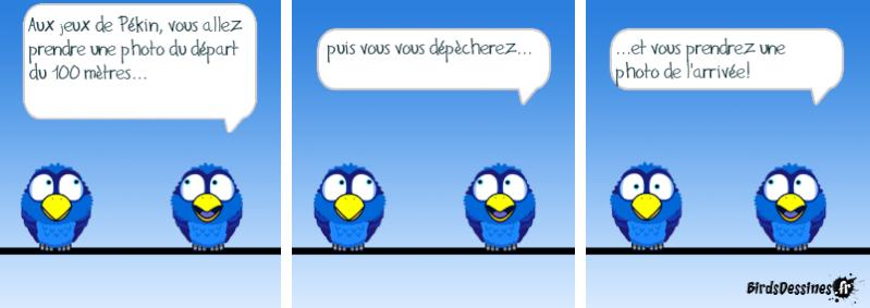 Les Birds - Page 13 14404211