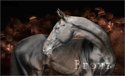Bronze → 10ans → Etalon →Espion Picsar12