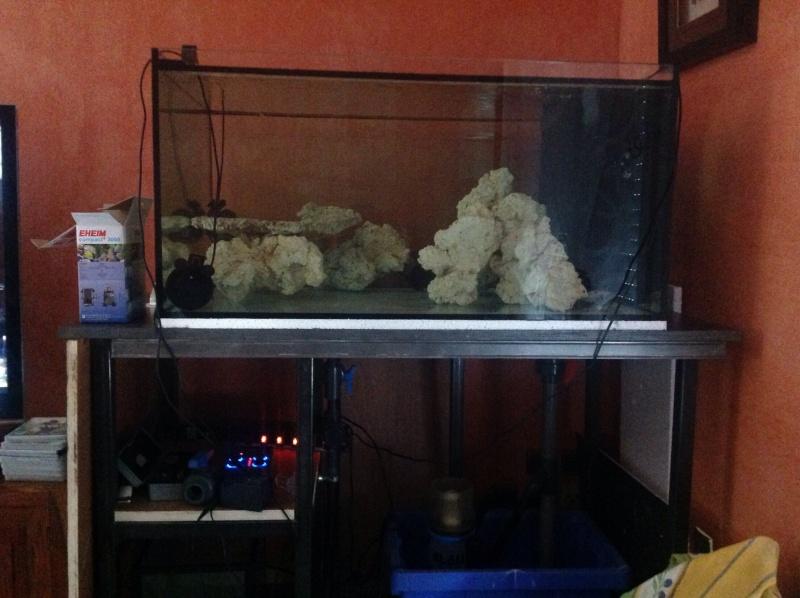 Mini reef de Lapomme - Page 2 Image11