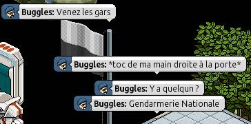 Rapports d'activités : Buggles. 110110
