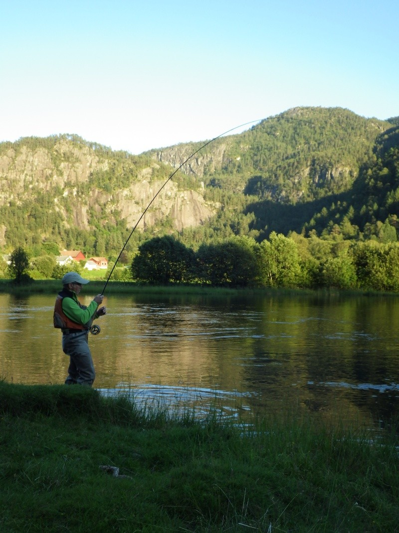 Saumons Norvégiens Rimg0111