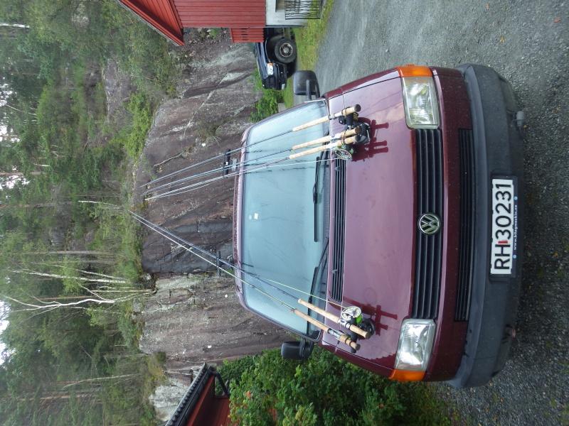 Saumons Norvégiens Rimg0112