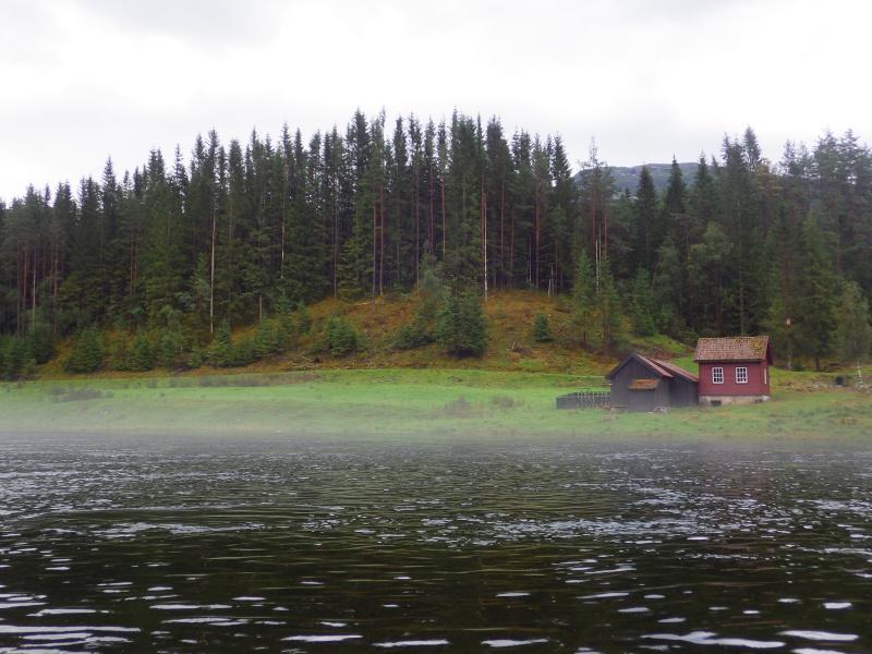 Saumons Norvégiens Rimg0213