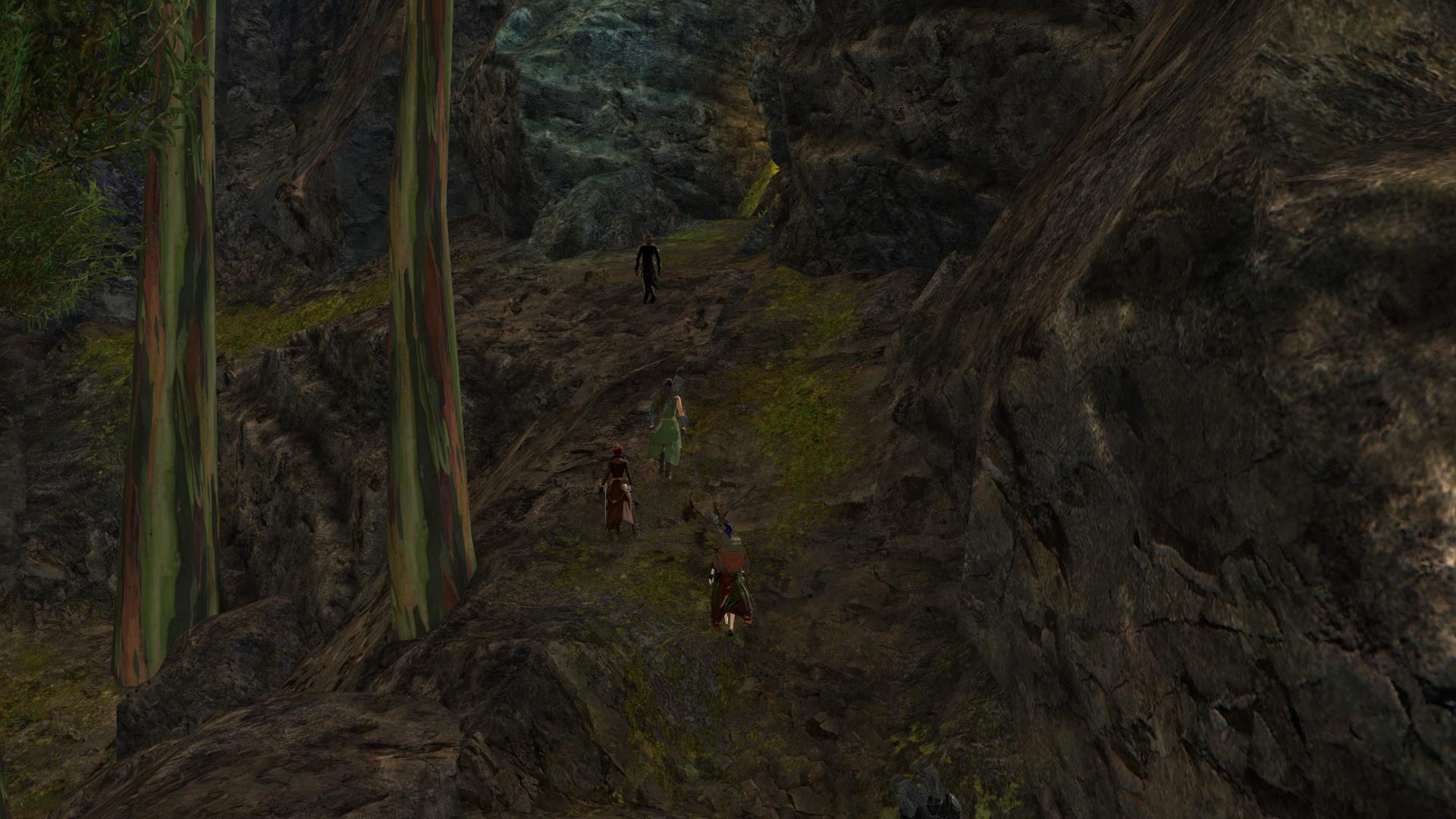 [18/08] La chasse au trésor Gw06610