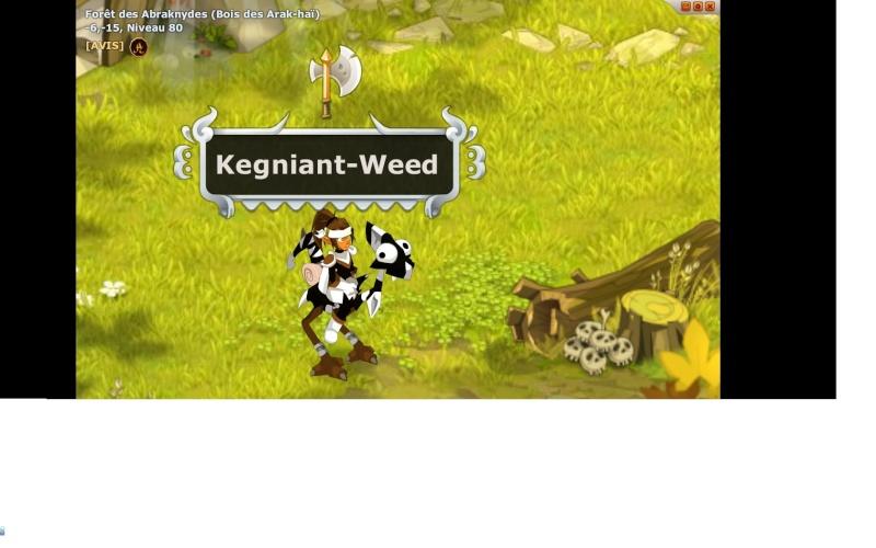 Candidature Kegniant-Weed Bg10