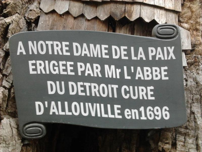 le chêne d'allouville-bellefosse 49c31c10
