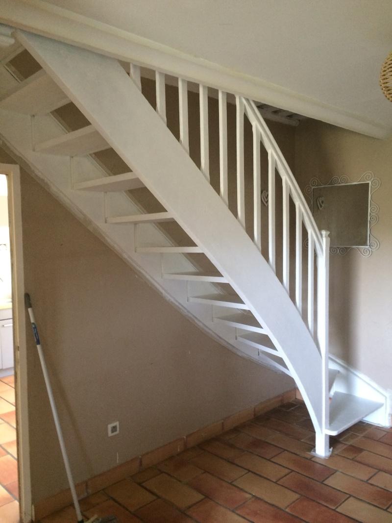 Amenagement Escaliers/ Entrée Escali10