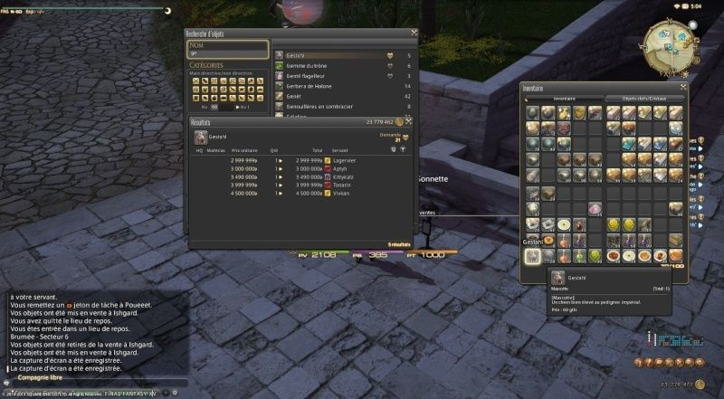 Instant insolite in game Ffxiv_11