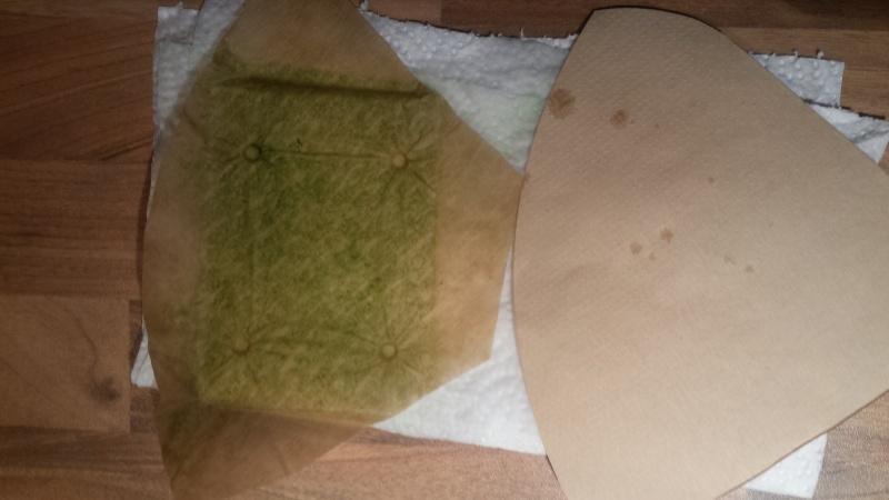 eau trouble, eau verdatre, vitre gluante verte, points verts - Page 4 20150819
