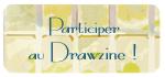 Nouveau design, création communautaire - Page 6 Drawzi10