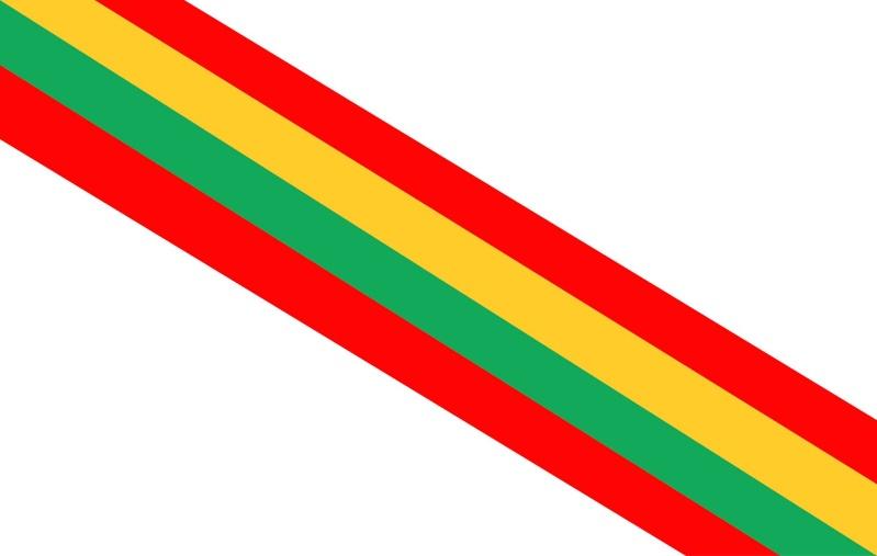 Bandeira do Baronato 11840212