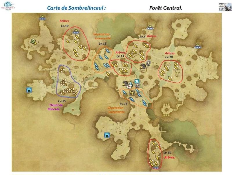 Sites de récolte de Sombrelinceul Foret-10