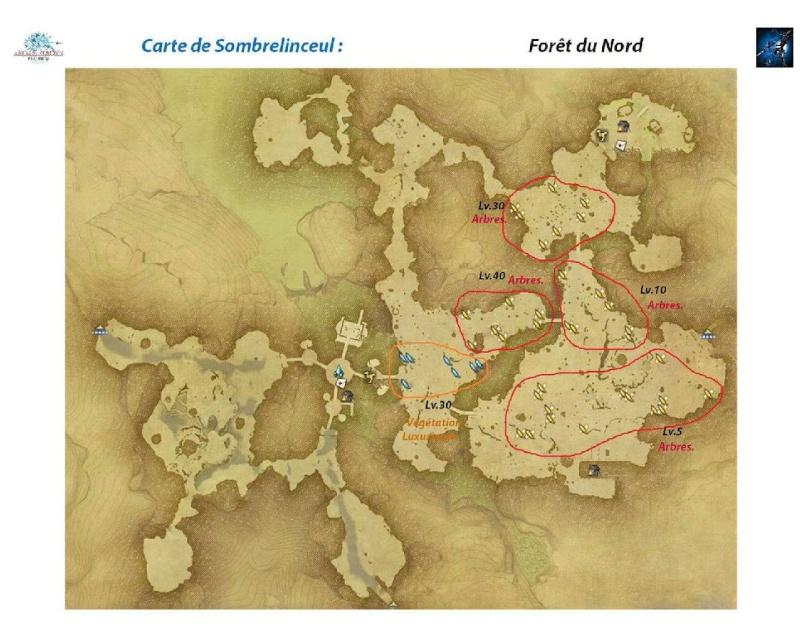 Sites de récolte de Sombrelinceul Foret-11