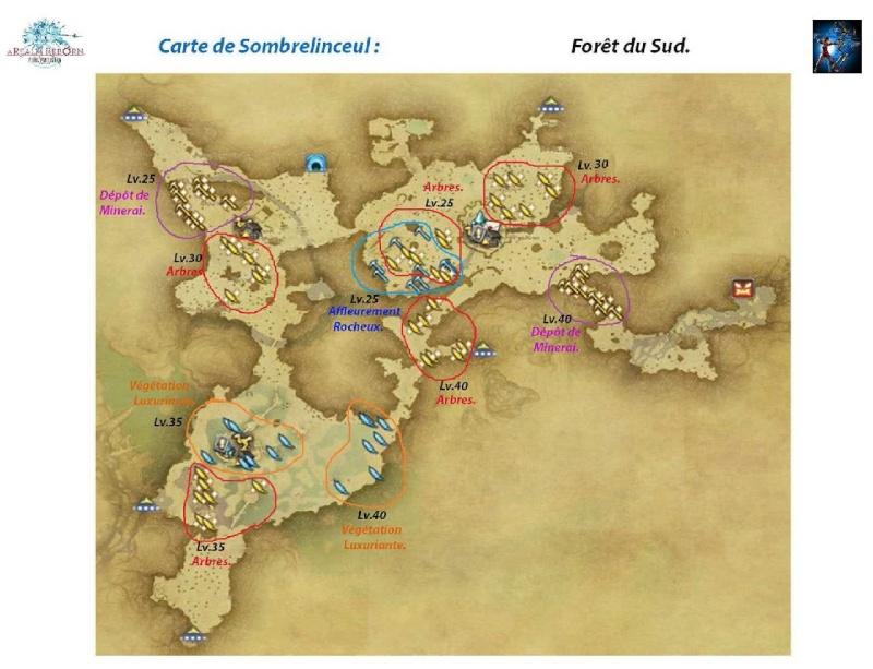 Sites de récolte de Sombrelinceul Foret-13