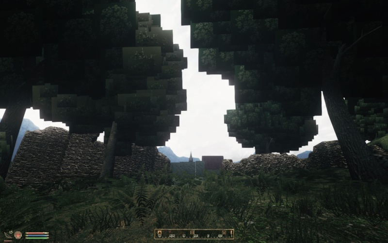 Strange Boxes Around Trees And Other Graphical Glitches When Using ENB 2015-011