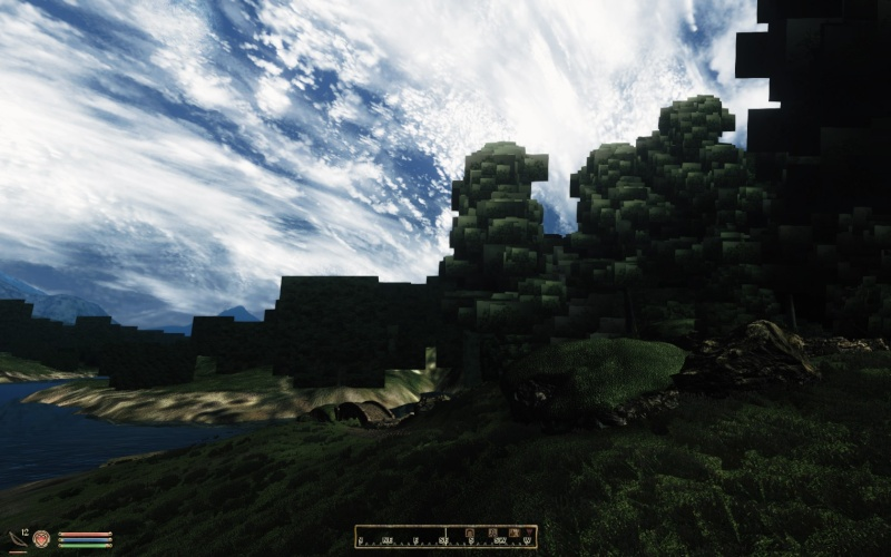 Strange Boxes Around Trees And Other Graphical Glitches When Using ENB 2015-012